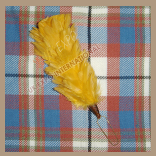 Golden Feather Hackles